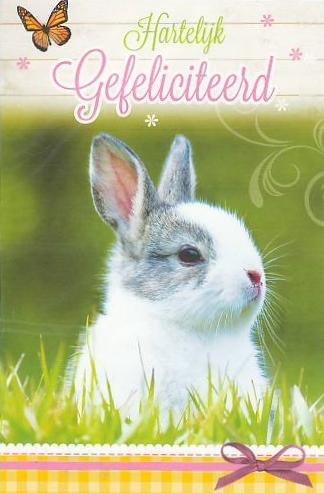 gefeliciteerd met dieren wenskaarten | Keeskaart.nl gefeliciteerd met dieren